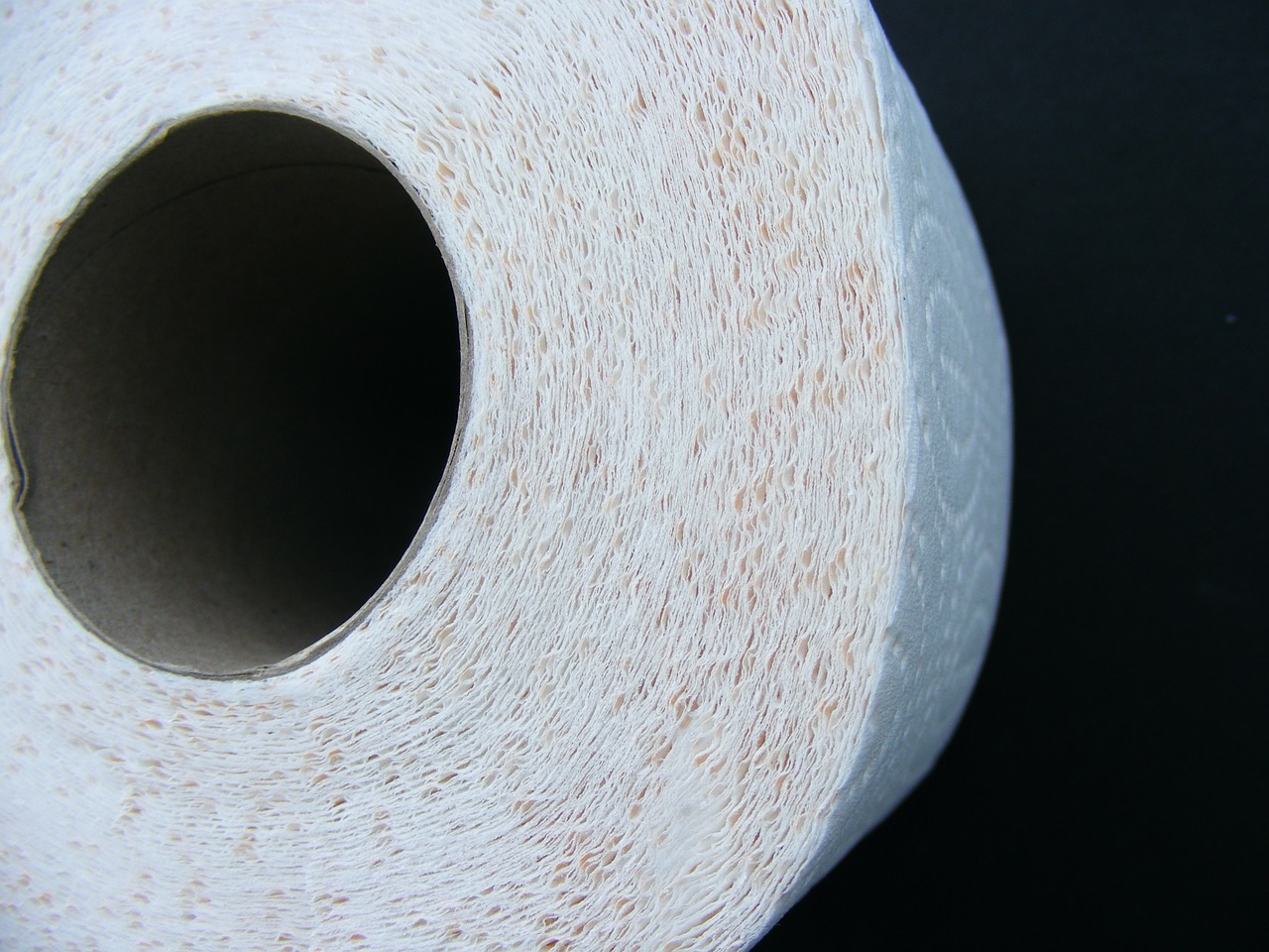 Close up of a roll of toilet paper.