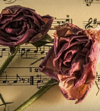 Dried pink roses lying on sheet music.