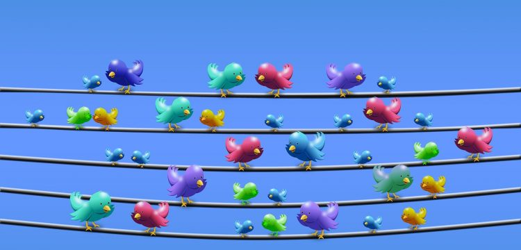 Image intended to remind one of Twitter, with duplicate Twitter birds sitting on wires.