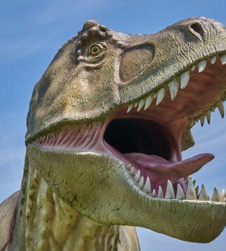 T Rex.
