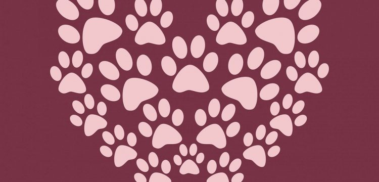 Paw prints in the shape of a heart.