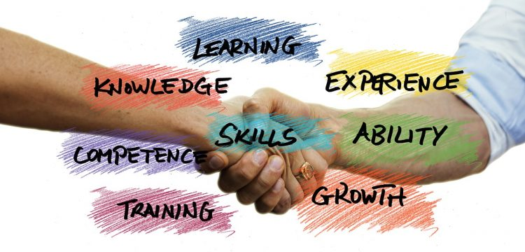 """Graphic denoting training terms such as """"skills"""", """"growth"""", and """"learning""""."""