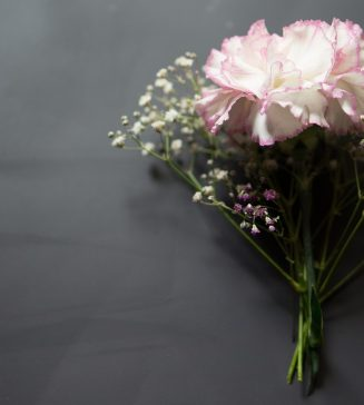 A pink carnation with baby's breath.