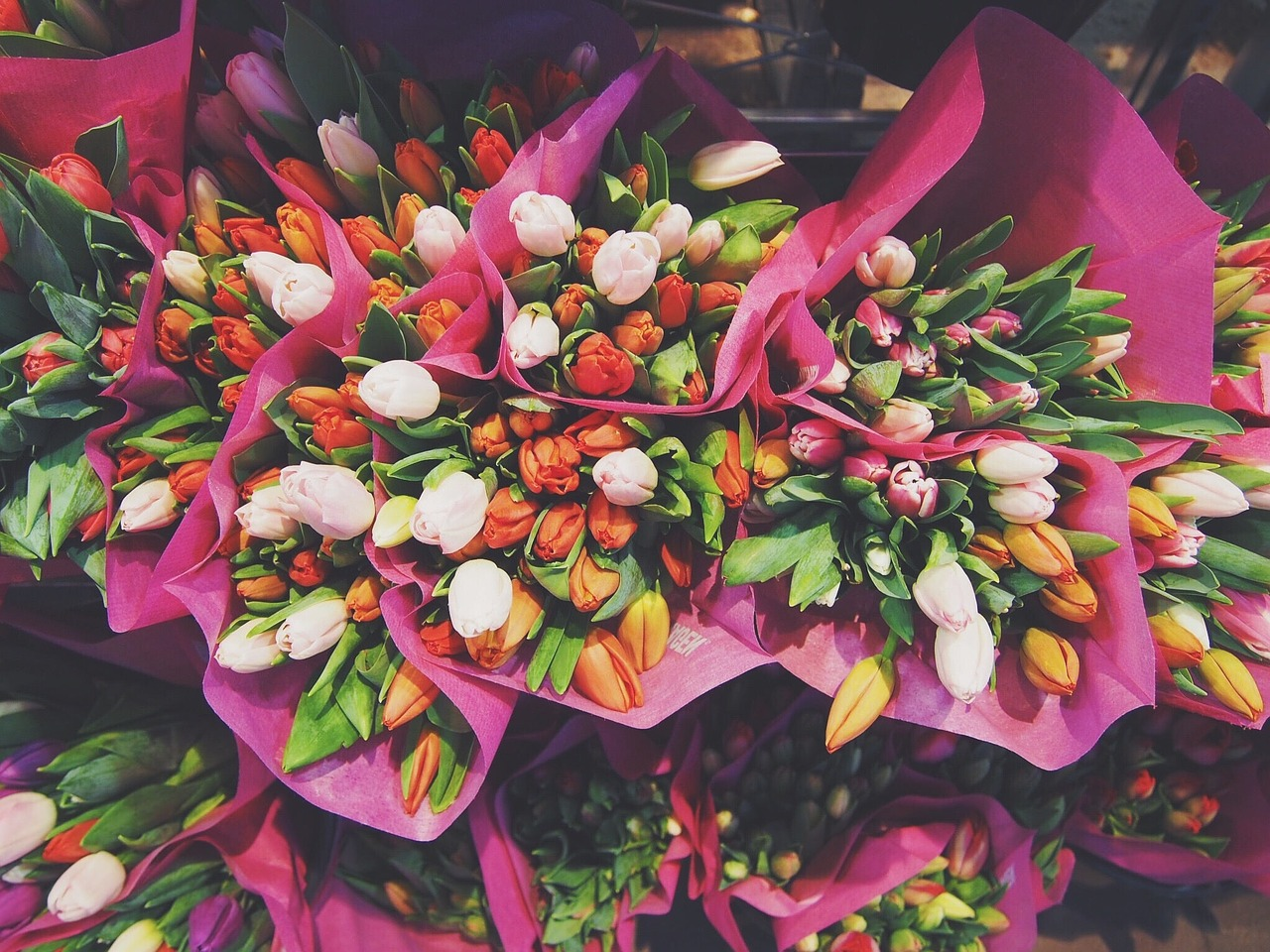 Bunches of brightly colored tulips.