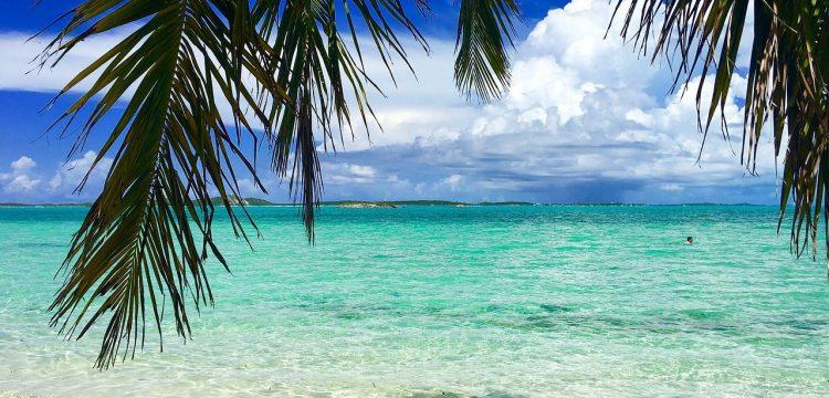 A beach in the Bahamas.