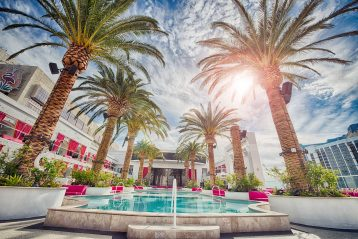 Palm trees and fountain in Las Vegas.