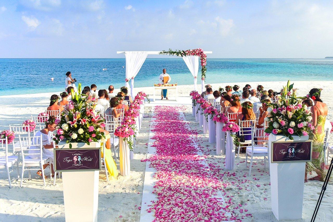 Wedding guests at a beach wedding.